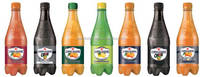 San Pellegrino soft drink in pet bottle - Bitter Orange - Sweet orange - Chinotto - Lemon - Tonic