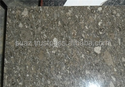 Dark Fossil Brown (Gray Limestone) Flooring Slabs from Pakistan, Grey Pakistan Limestone Tiles , Gray Slab