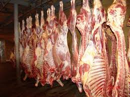 FROZEN HALAL LAMB MEAT,MUTTON,GOAT,VEAL,BEEF,VENISON AND CARCASS ON SALES WITH COMPETITIVE PRICES.