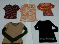 LADIES FASHION BLOUSE #1