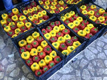 Fresh Style Bell Pappers, Fresh Capsicums(REd, Yellow, Orange)