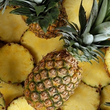 $409 PER TON HIGH QUALITY FRESH PINEAPPLE