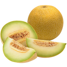 Galia Melons - Bulk, Ships From Morocco - Low/No Tariffs To EU/US/Others