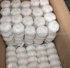wholesale bulk 2016 cold store fresh natural garlic for thailand
