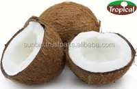 RBD Coconut Oil, Extra Virgin Coconut Oil in competitive price