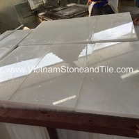 Vietnam Cheap Snow White Marble Tile