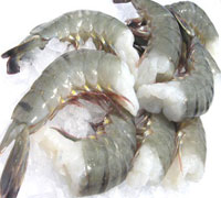 Frozen HOSO Black Tiger Shrimps / Thailand Frozen Shrimps Supply / Vannamei shrimp