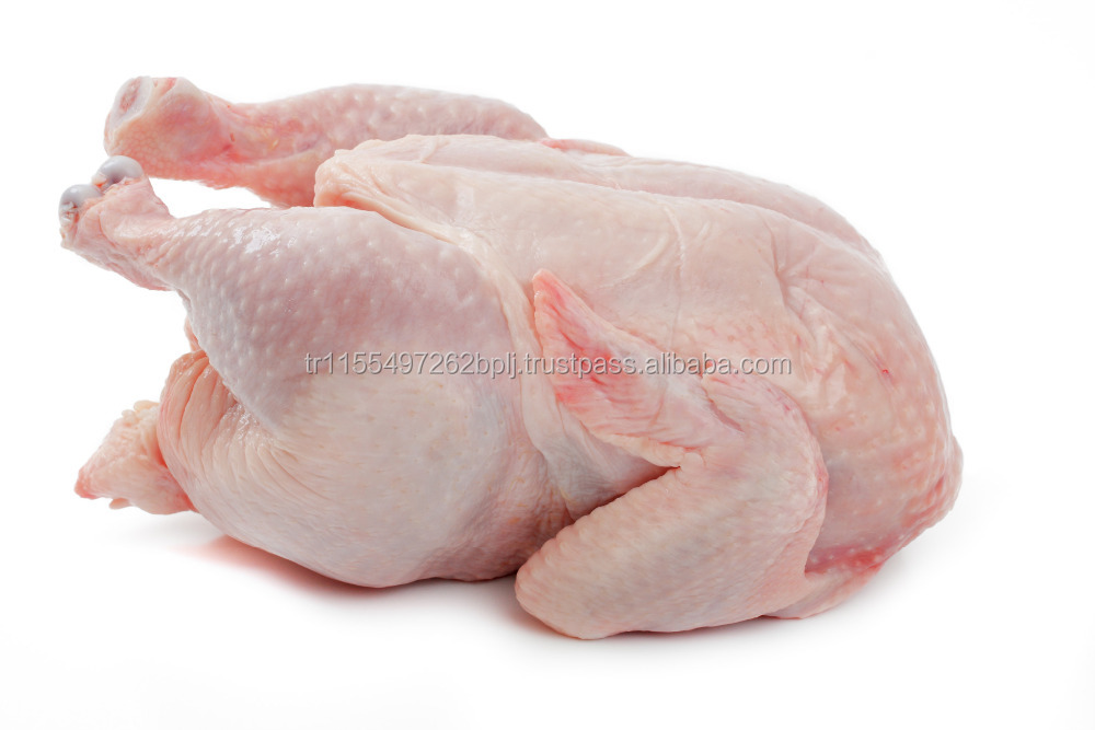FROZEN HALAL WHOLE CHICKEN, CHICKEN FEET, PAWS, WINGS, GIZZARDS.....//
