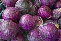 Fresh red Cabbages class 1