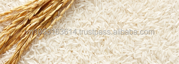 hot sale for thai hom mali jasmine rice 5% broken quality