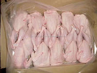 Frozen Whole Halal Chicken Meat For Sale