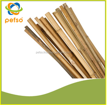 Cheap Vietnamese Bamboo cane for sale