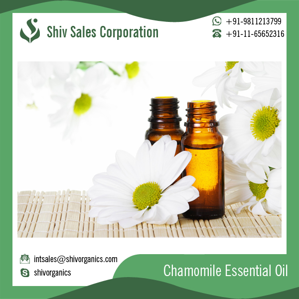 Chamomile Essential Oil for Best Skin Hair and Body