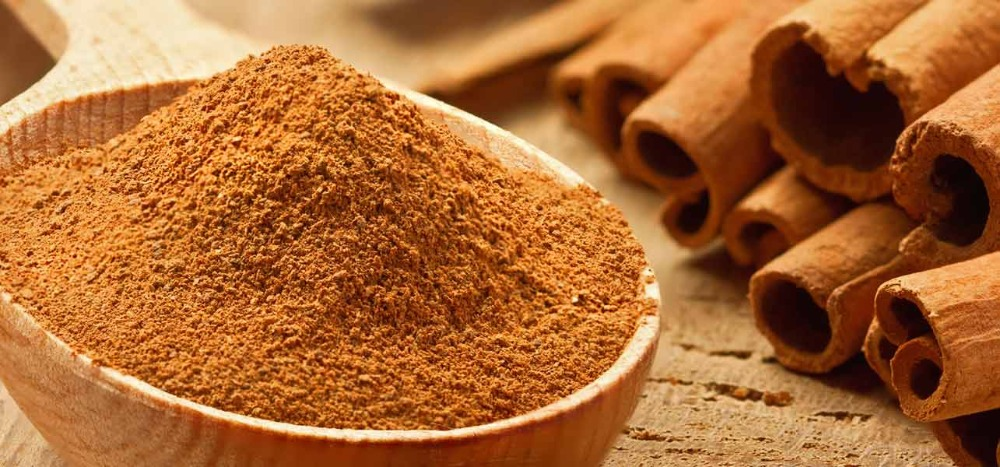100% natural ground cinnamon with high oil content by HAGIMEX