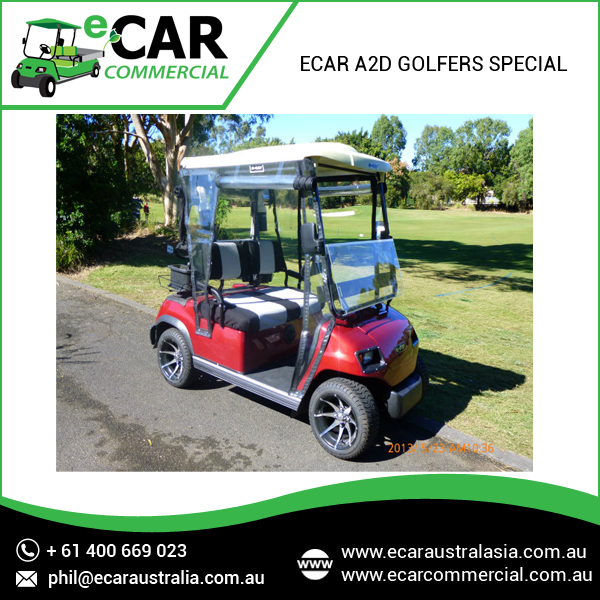 2016 New Model Electric Golf Cart as Hunting Buggy for Sale