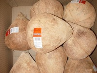 husked and semi husked coconut exporter