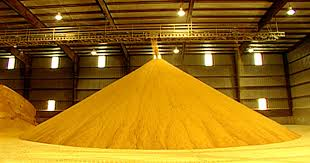 corn Protein 60%/55% for chicken feed