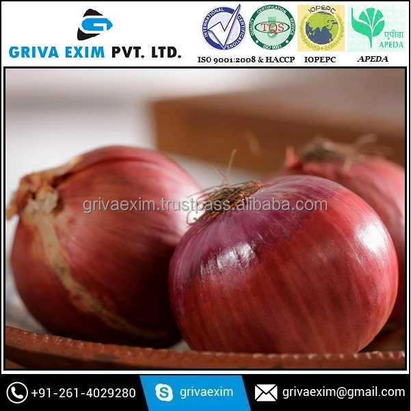 Indian small and Jumbo Onion for sell