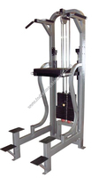 Assisted Dip Chin (Made In India) Sports Show Commercial Gym Equipment/Fitness Equipment/Low Price Best Quality