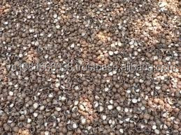 CASHEW NUT SHELL MADE IN VIET NAM- HOT PRICE