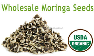 Best Manufacturer/Exporter/Supplier for Moringa seed