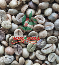 Vietnam coffee bean Robusta