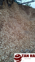 WOOD CHIPS HIGH QUALITY MARKET