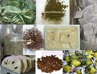 Air dried soursop leaves, seeds, plants, fruits