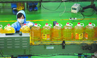 100% REFINED EDIBLE SUNFLOWER OIL FIT FOR HUMAN CONSUMPTION,USED COOKING OIL