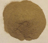 High Quality Pure Deer Velvet Antler Powder