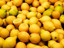 Lemon - Citrus Fruit - www.agriprices.com - Contact Us For Small & Large Orders