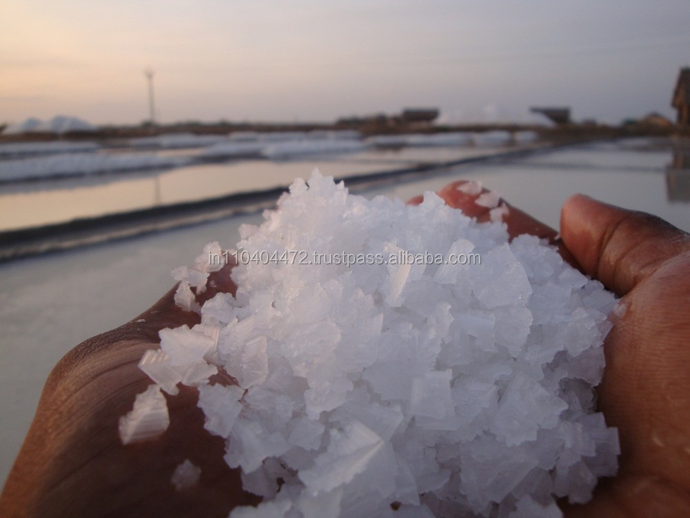 Solid Type of White Crystal Salt