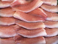 Fish Food For Florida Tilapia Frozen IQF Glazing