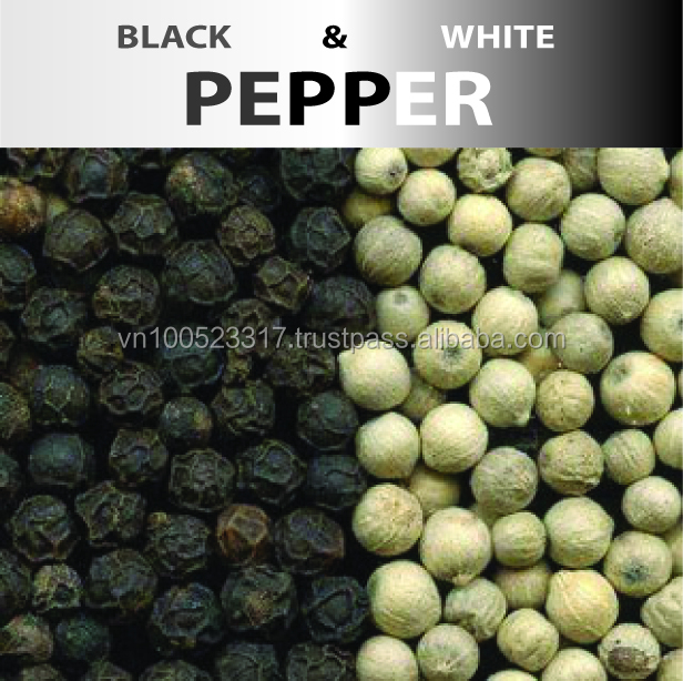 Vietnam Black pepper - Well come to Vietnam