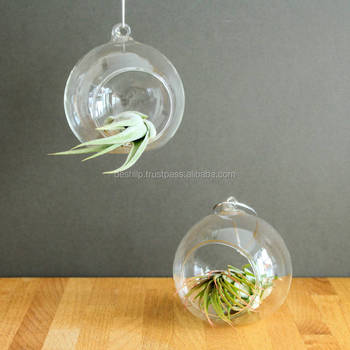 TERRARIUM,PURPUL CLR FLOWER HANGING,COLOR T-LIGHT HANGING,GLASS TERRARUM HANGING,GLS TEARDROP,GLASS PLANT TERRARIUM VASE