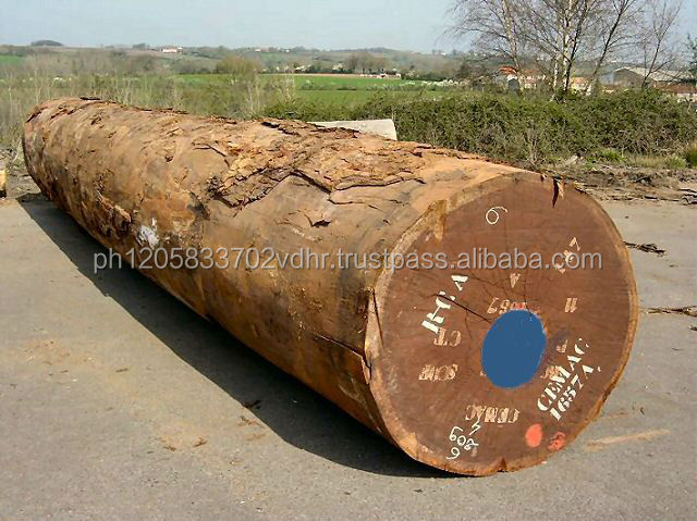 Tali Logs and Lumber Ready for Supply.