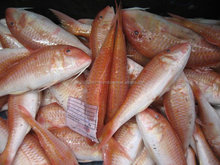 2017 Frozen Red Seabream Fish For Sale