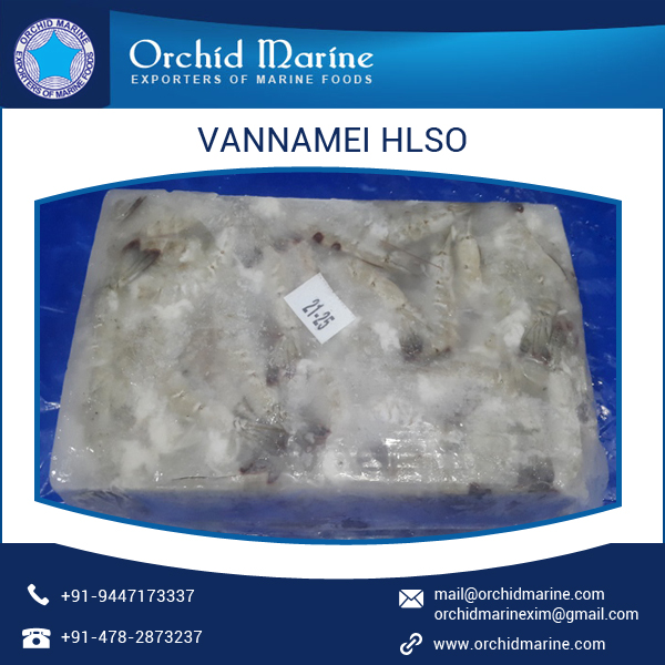White IQF Vannamei HLSO Shrimp Wholesale Exporter