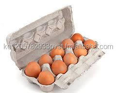 eggs in 6/12 pack cartons