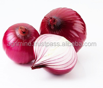 onion from indian suppliers