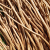 Ceylon Cinnamon Stick Price In Sri