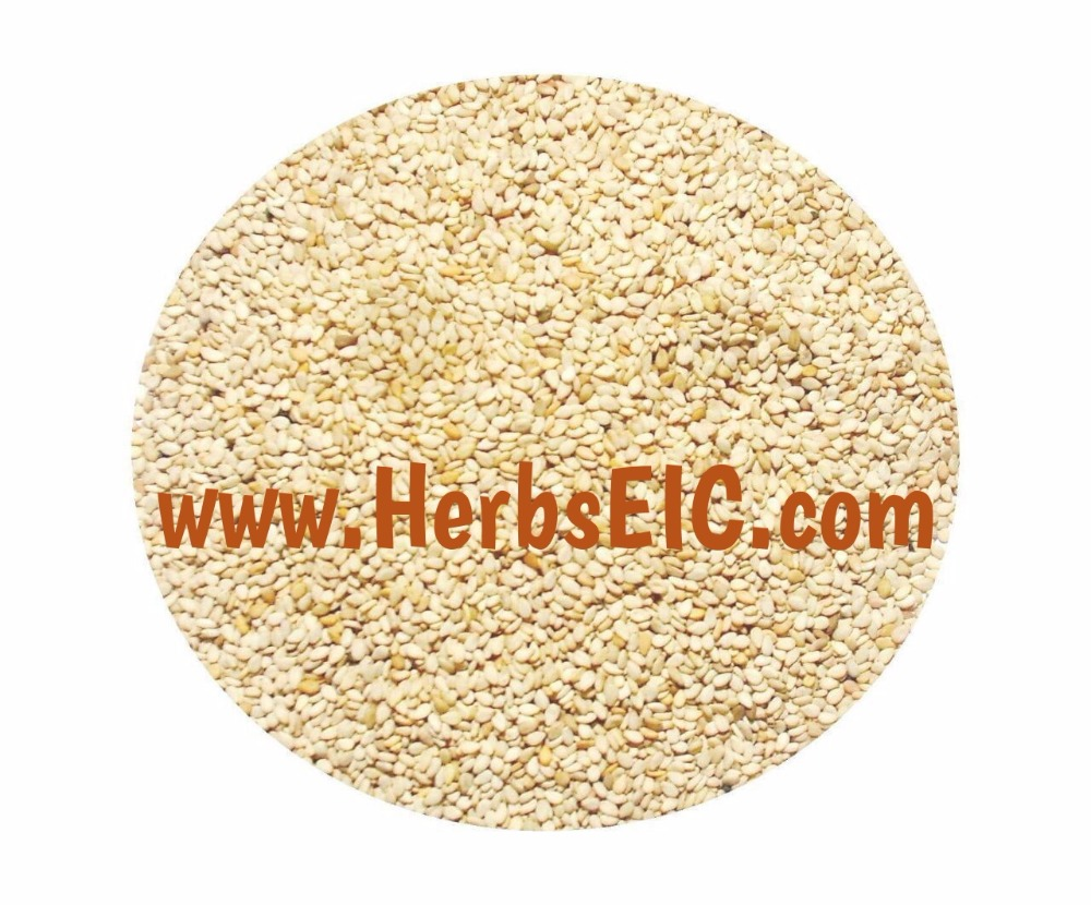 Sesame seed trading companies l Egypt