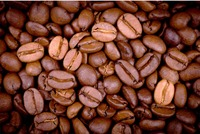 Best Arabica coffee from Vietnam