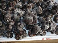 dried truffles for sale