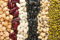 Quality Black Soybean From China for Sale