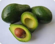 Fresh Hass Avocado and Fuerte Avocado For Sale