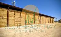 Alfalfa Hay - Premium Export Quality Small / Big bales