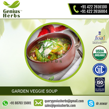 Garden Veggie Soup/ Vegetable Soup