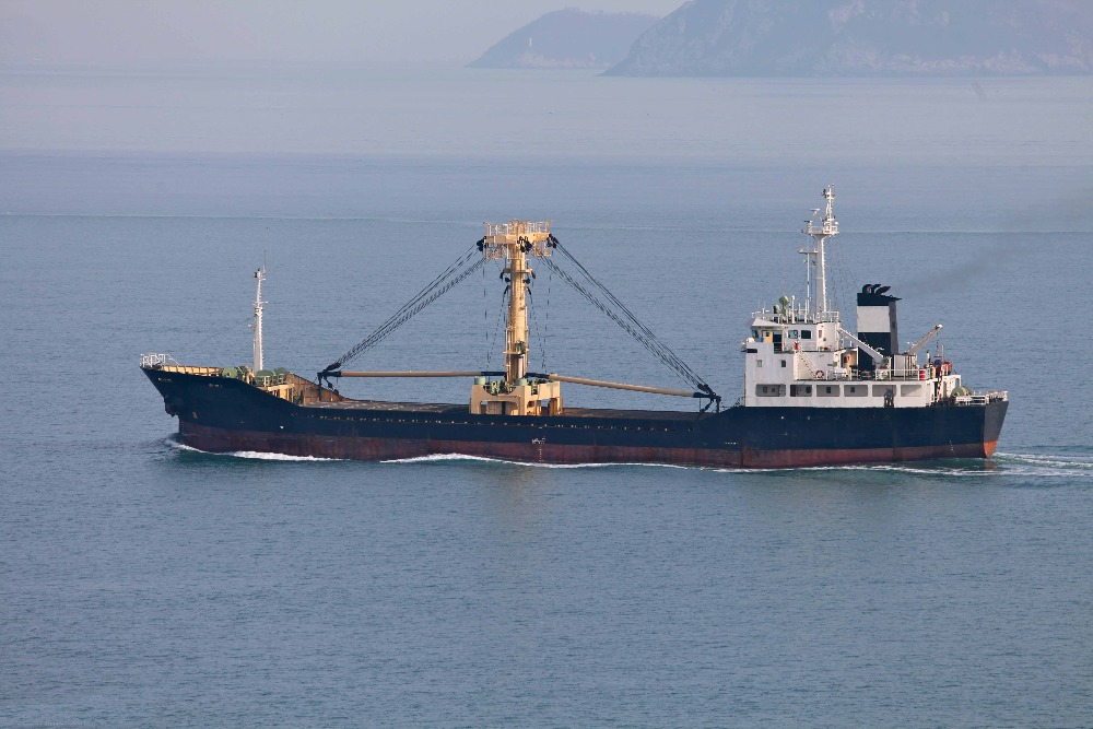 3,366 dwt general cargo ship for sale ( Nep-ca0032)