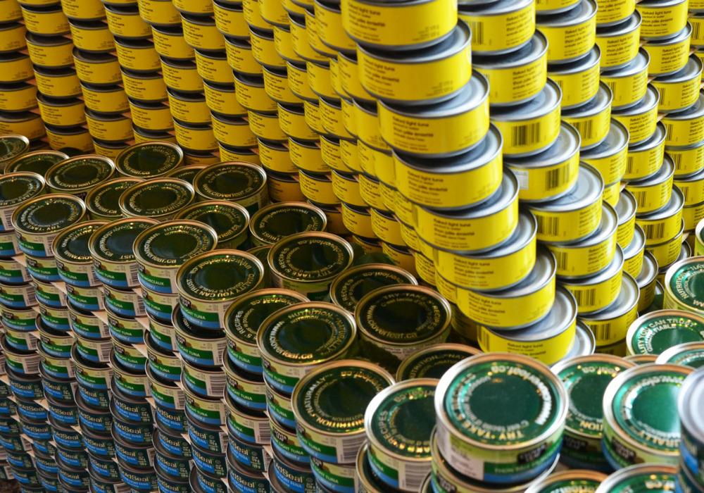 Canned Tuna fish for instant shipment